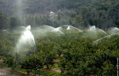 3.L'irrigation